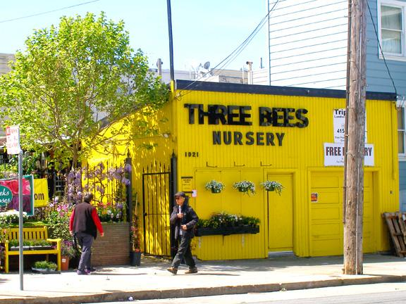 Established Nursery Business for Sale