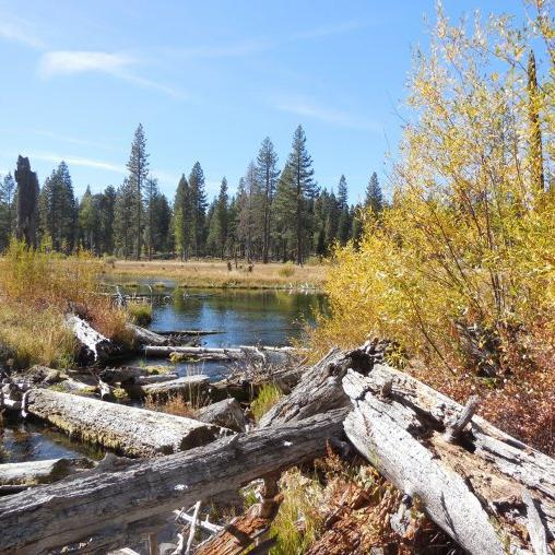 186-ACRE Northern California LAND